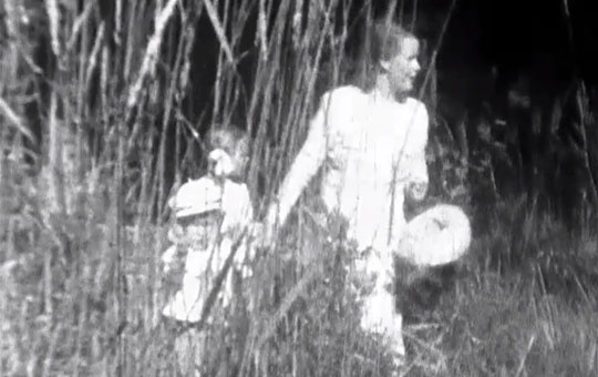 two people walking through tall grass