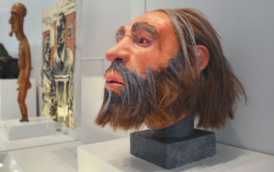 Reconstructed Neanderthal Head