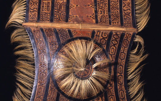 wooden shield from philippines