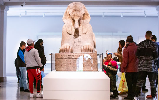 people looking at the sphinx